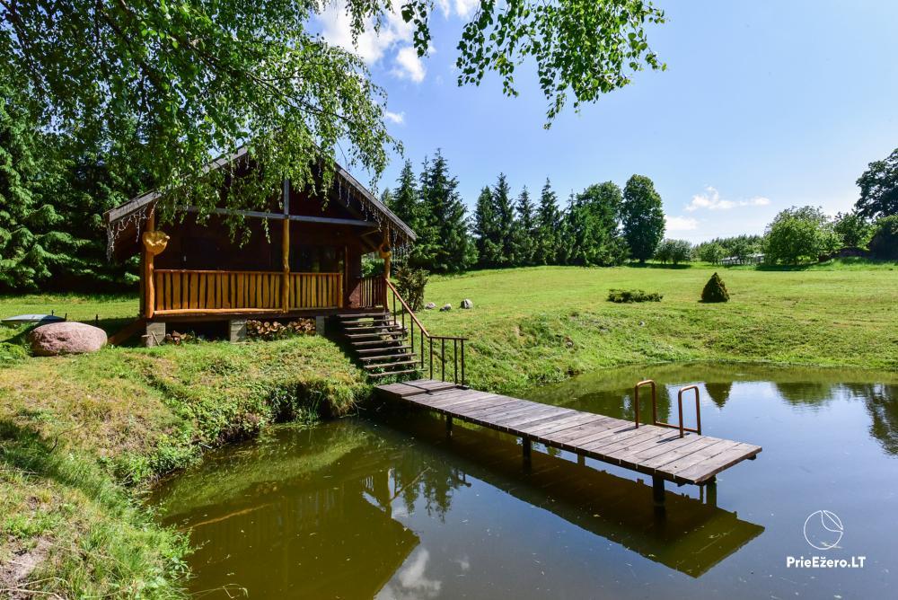 Countryside homestead in Kelme region A pearl of Voverishke - 33