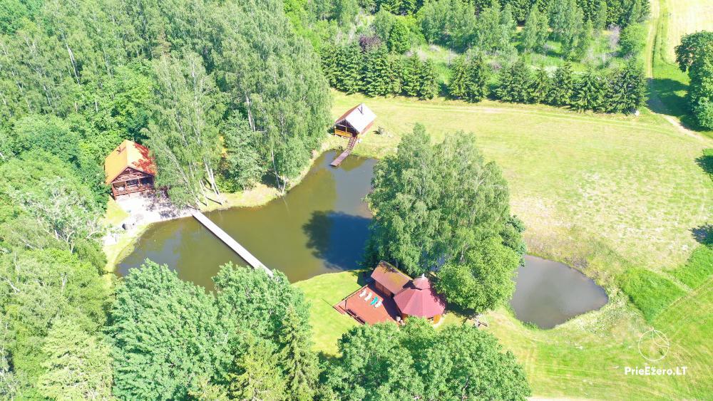 Countryside homestead in Kelme region A pearl of Voverishke - 50