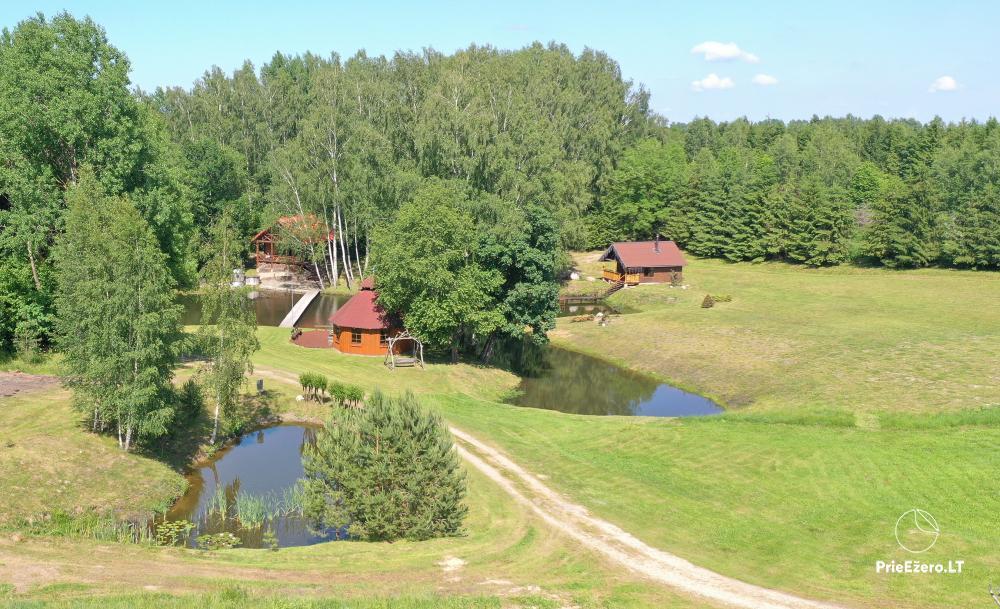 Countryside homestead in Kelme region A pearl of Voverishke - 47
