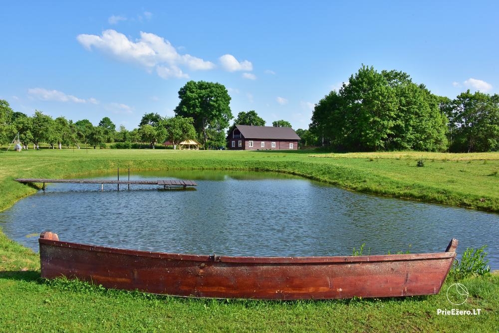 Countryside homestead near the lake in Lithuania Prie koptos - 19