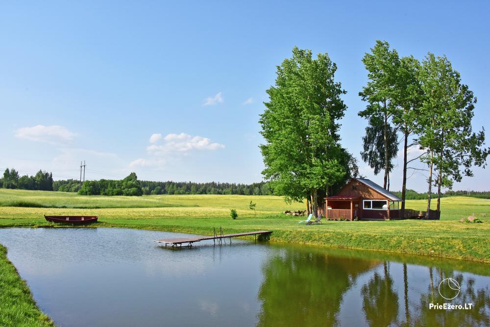Countryside homestead near the lake in Lithuania Prie koptos - 15