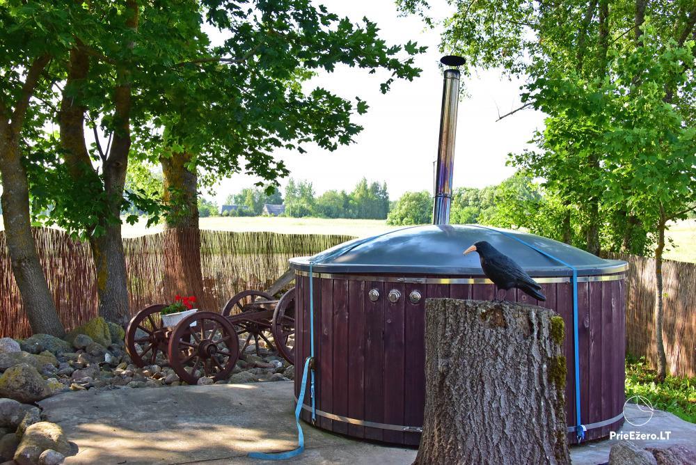 Countryside homestead near the lake in Lithuania Prie koptos - 18