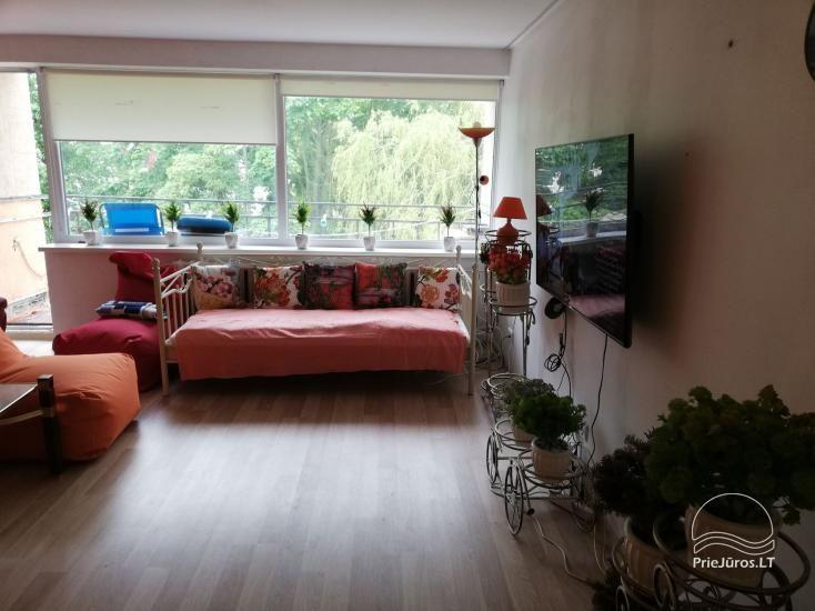 Modern apartment for rent in Rusne, up to 6 guests, very good location for fishermen - 9
