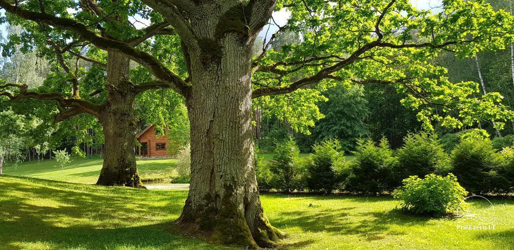 Oaks of Aisetas - ein ländliches Gehöft in der Nähe des Aisetas-Sees in Litauen - 2