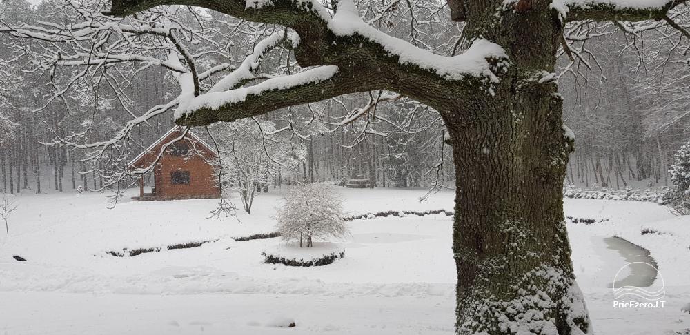 Oaks of Aisetas - ein ländliches Gehöft in der Nähe des Aisetas-Sees in Litauen - 3