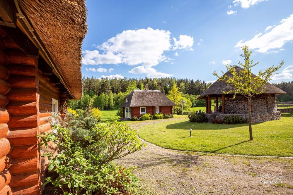 Countryside homestead for rent in Paezeriai, in Lithuania - 14