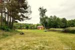 Countryside near Druskininkai on the shore of the lake - 4