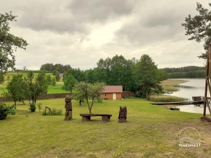 Countryside near Druskininkai on the shore of the lake - 1