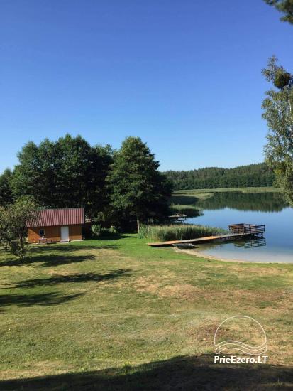 Countryside near Druskininkai on the shore of the lake - 7
