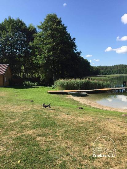 Countryside near Druskininkai on the shore of the lake - 9
