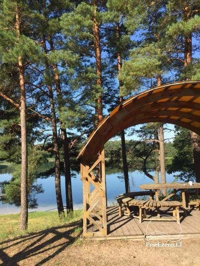 Countryside near Druskininkai on the shore of the lake - 10