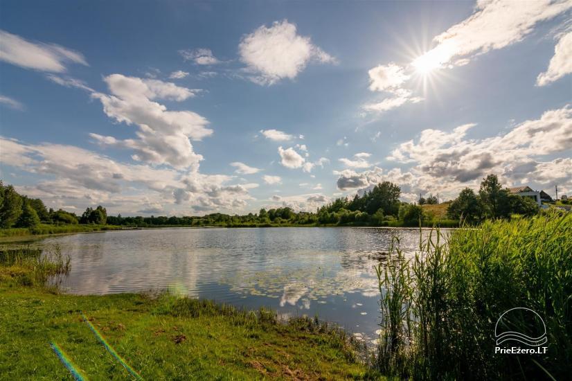 Lugne House - countryside homestead in Trakai region near the lake - 3