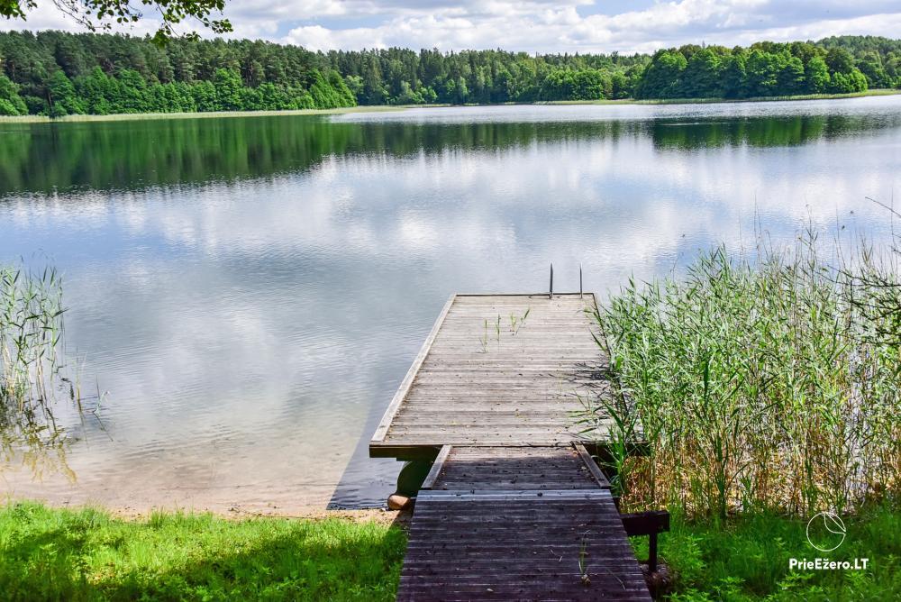 Countryside homestead in Trakai region near the Monis lake - 2