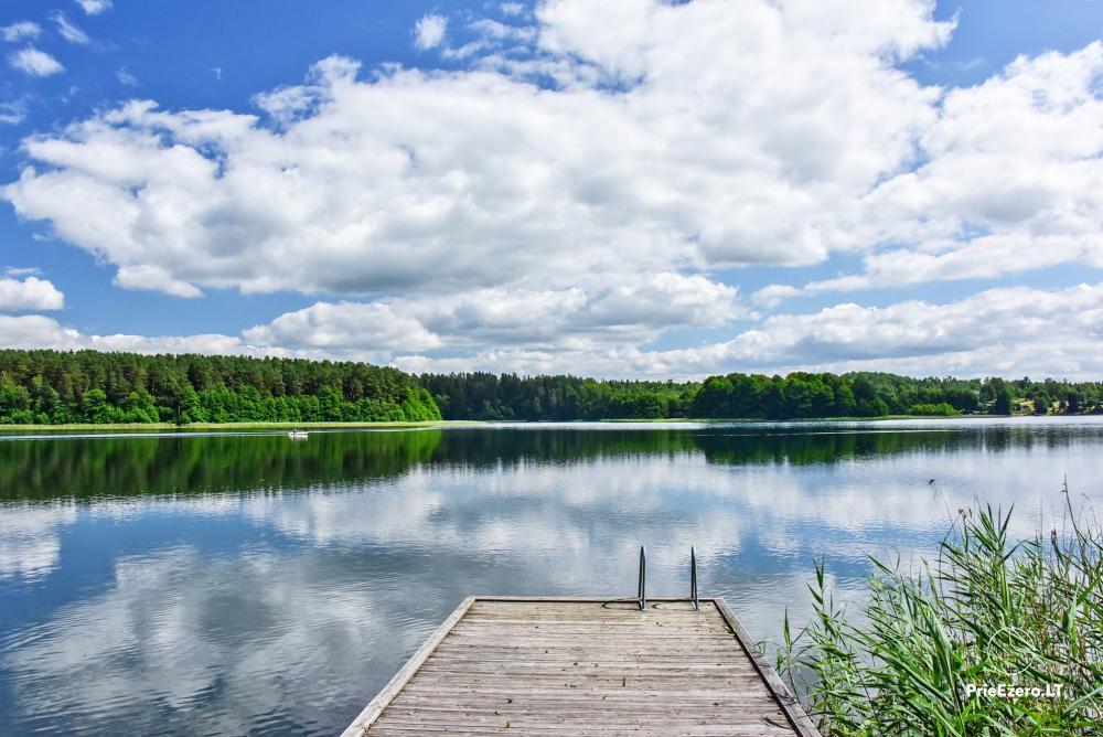 Countryside homestead in Trakai region near the Monis lake - 1