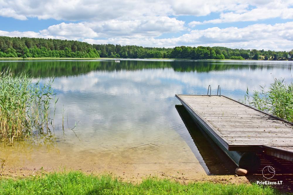 Countryside homestead in Trakai region near the Monis lake - 5