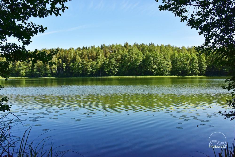 Homestead on the shore of the lake Ilgutis - 45