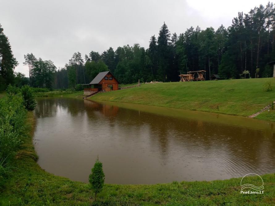 Sauna house near Druskininkai At Marius'  - 10