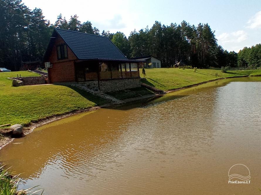 Sauna house near Druskininkai At Marius'  - 13