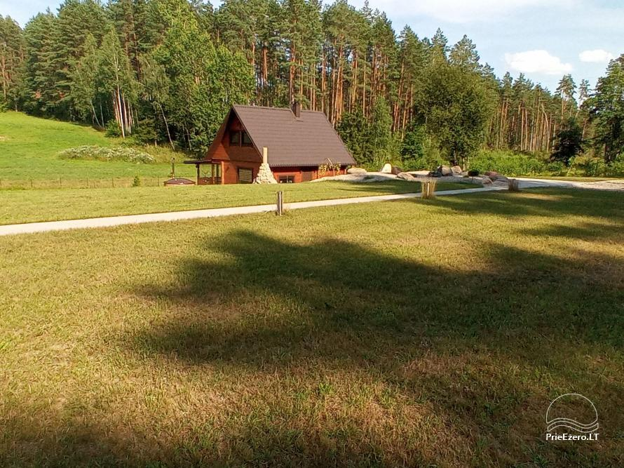 Sauna house near Druskininkai At Marius'  - 18