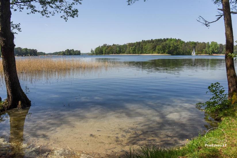 Honey bathhouse in Trakai at the lake Skasitis - 33
