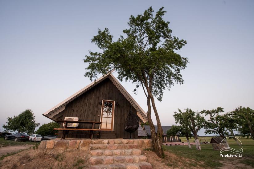 Vila Rica - family holiday house near Druskininkai resort - 1