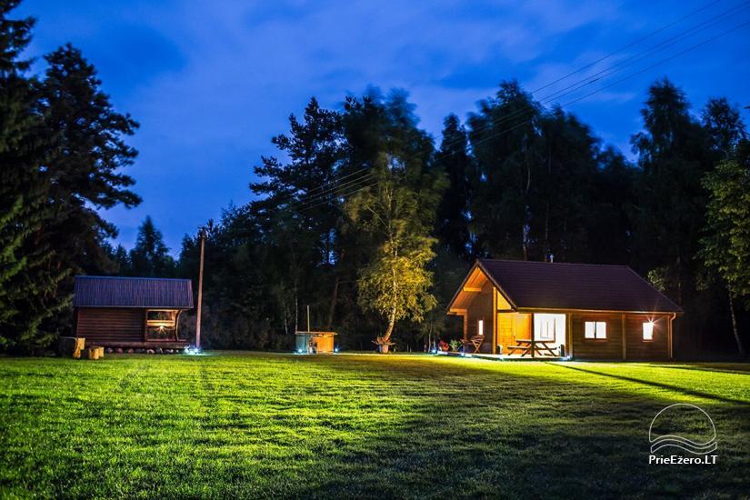 Countryside homestead in Varena region Pine cone - 1