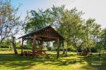 Countryside homestead in Varena region Pine cone - 10