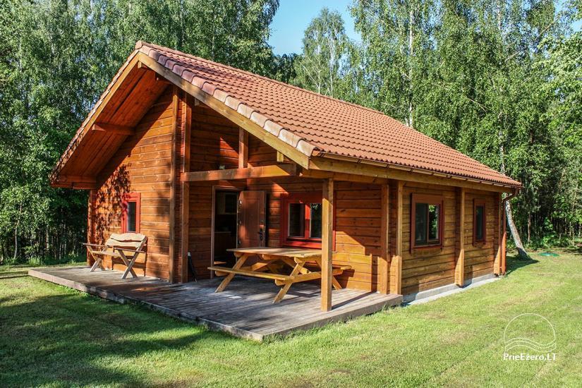 Countryside homestead in Varena region Pine cone - 2