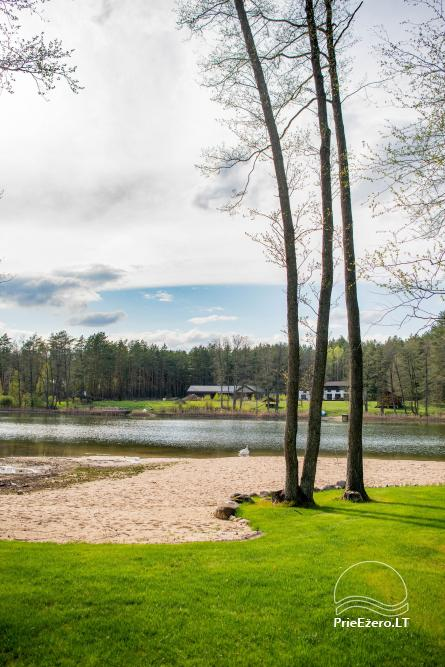 Vila Natura - accommodation in the forest near the lake Ilgis - 11