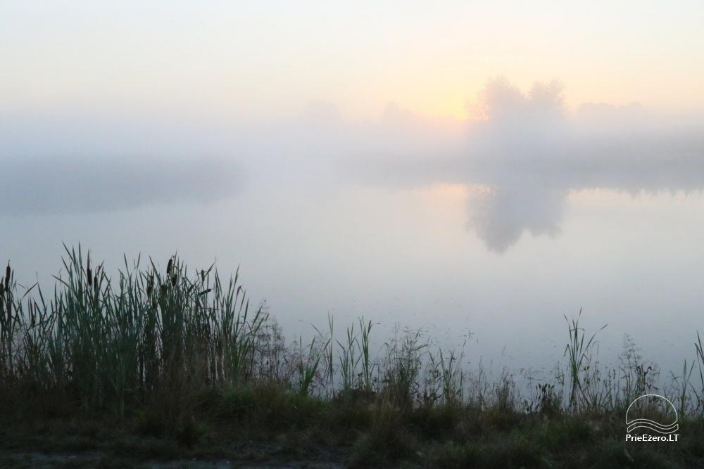 Усадьба в Игналинском районе на берегу водоема Ažvinčių sodyba - 25