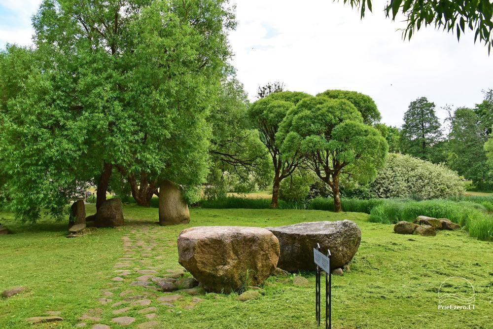 Homestead in Mosedis Dream lavender - 48