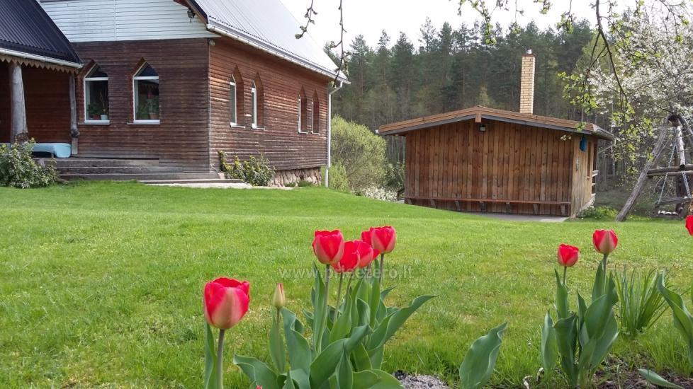 Сельская вилла в Вильнюсском районе Neries vila - 4