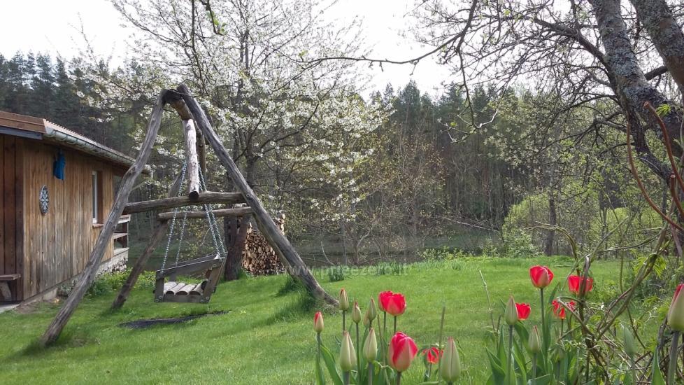 Сельская вилла в Вильнюсском районе Neries vila - 9