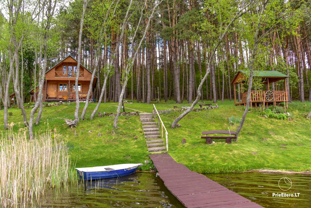 Holiday villas and bathhouse in a homestead Žemuogynė in Moletai district at the lake - 23