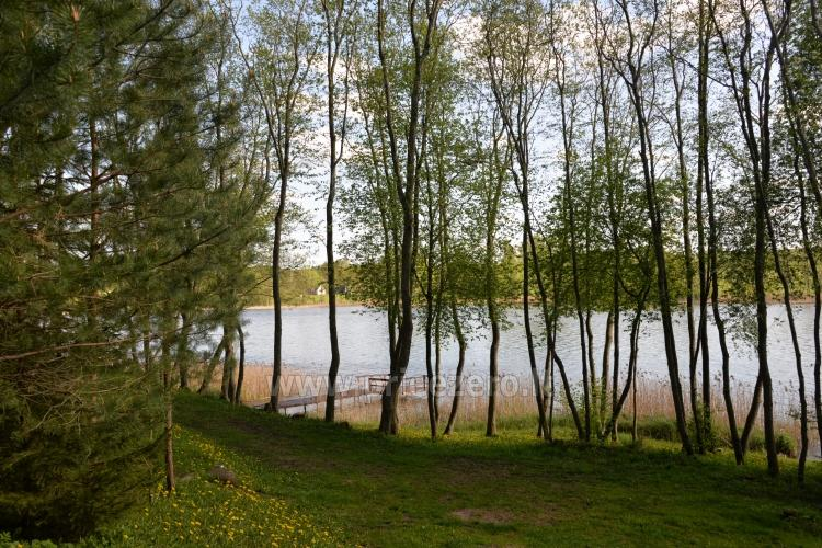 Holiday villas and bathhouse in a homestead Žemuogynė in Moletai district at the lake - 30