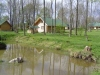 Homestead-villa Silvestras Manor: holiday cottages, bathhouse. Quiet and active vacation - 58