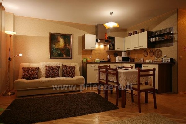 1-2-room apartments for vacation in Druskininkai - 5