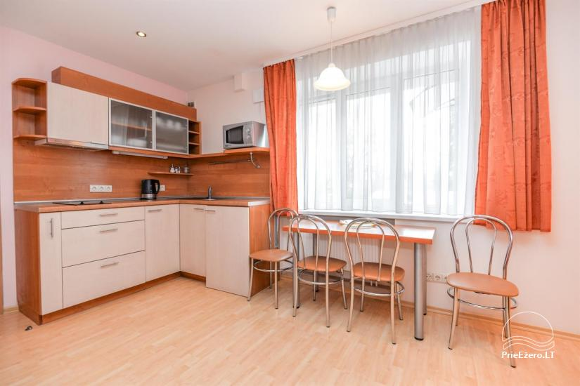 'Red' and green apartment in Druskininkai - 10