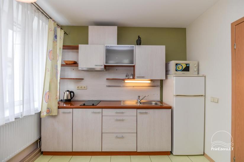Green apartment in Druskininkai - 5