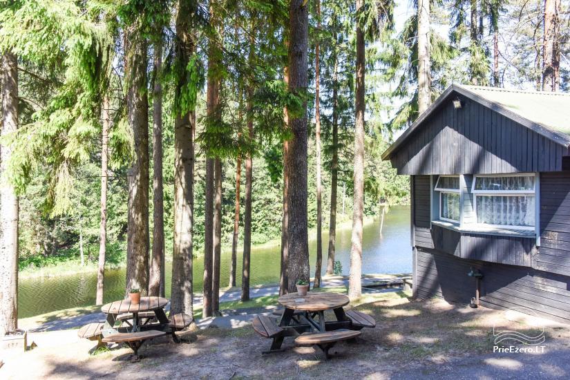Holiday cottages, apartment, bathhouse near the lake Plateliai Saules slenis - 57