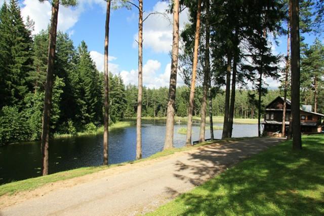 Holiday cottages, apartment, bathhouse near the lake Plateliai Saules slenis - 58