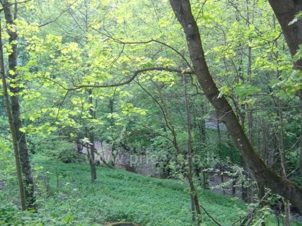 Guest House auf einem Fluss-Seite Ratnyčėlė - 6