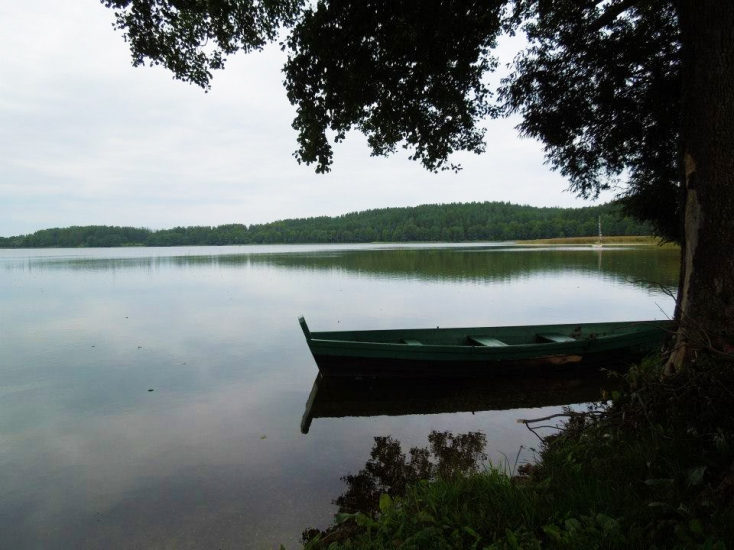 Hoemstead at the lake in Ignalina region Karolio sodyba - 10
