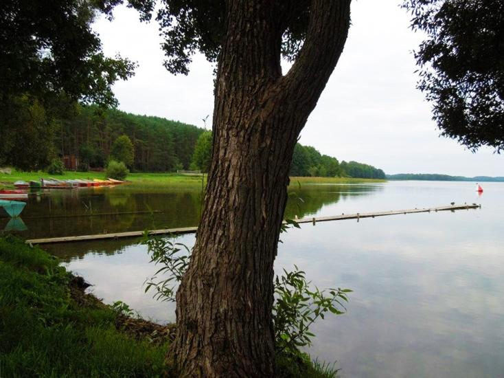 Gospodarstwo nad jeziorem w rejonie Ignalino Karolio sodyba - 11
