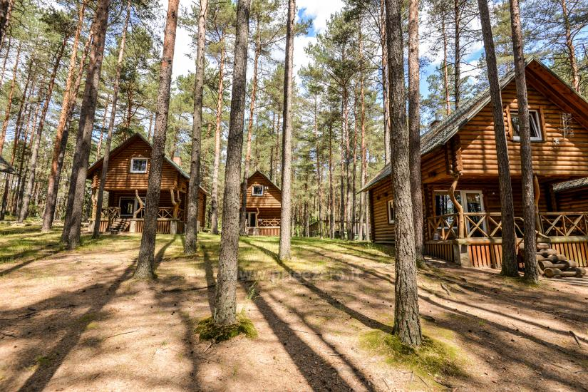 Rooms for rent in homestead, in Druskininkai - 3