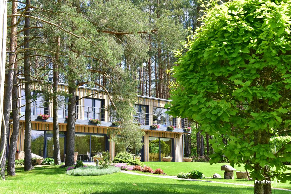 Homestead in Anyksciai region Pine Trail: accommodation, banquets and conference hall, bath, hot tub - 18