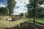 Homestead in Anyksciai region Pine Trail: accommodation, banquets and conference hall, bath, hot tub - 10