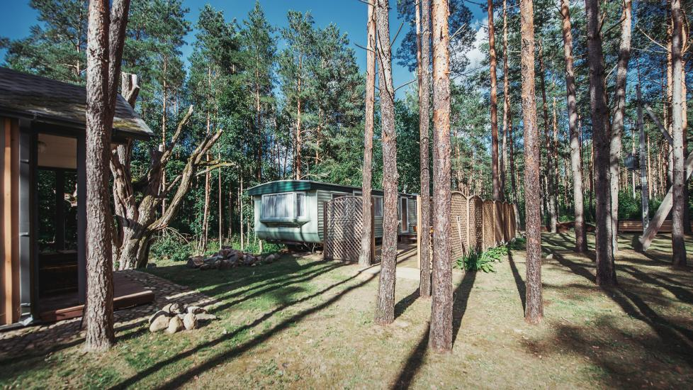 Homestead in Anyksciai region Pine Trail: accommodation, banquets and conference hall, bath, hot tub - 14