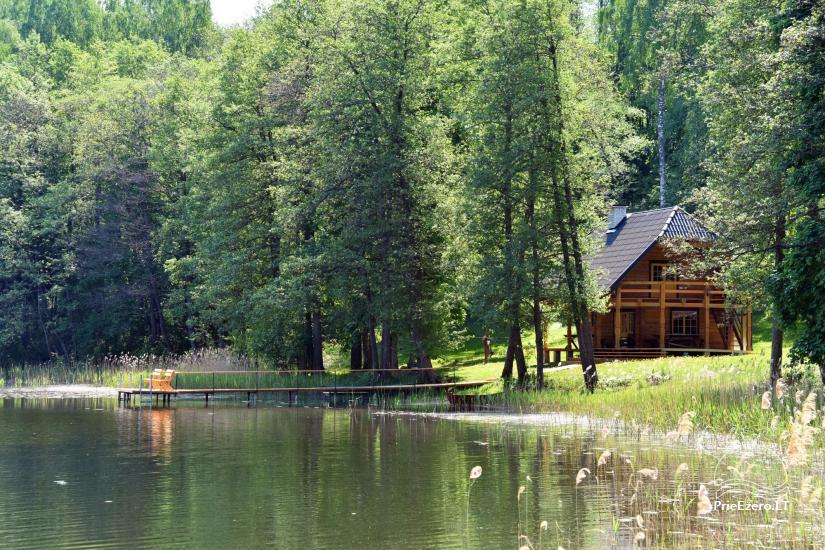 Сельский дом и баня у озера в Игналинском районе - 12