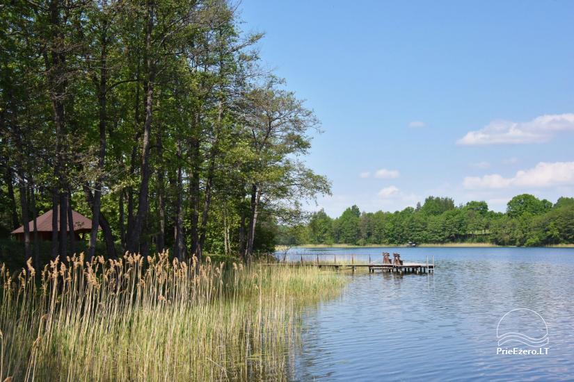 Сельский дом и баня у озера в Игналинском районе - 43